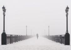 Construa uma ponte sobre a paisagem da cidade no dia de inverno nevado nevoento Imagem de Stock Royalty Free