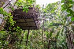 Construcción abandonada con hardware expuesto en medio de la vegetación intensa de un bosque tropical imagen de archivo
