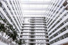 Construcción blanca grande de la palma del cielo azul del edificio de oficinas mucha Den Haag Hague de alta tecnología dentro den imágenes de archivo libres de regalías