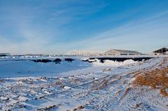 Construcción de acero en el fondo del paisaje del invierno fotografía de archivo