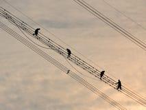 Construcción de la red eléctrica Fotografía de archivo libre de regalías