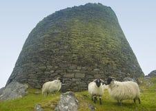 Construcción de piedra antigua escocesa, broch Carloway Isla de Lewis Imagen de archivo libre de regalías
