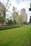 Construcción de viviendas moderna con la hierba verde Foto de archivo