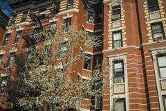 Construcción de viviendas vieja clásica, New York City Imagen de archivo libre de regalías