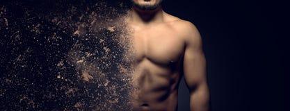 Construcción del concepto de cuerpo superior masculino muscular perfecto fotografía de archivo libre de regalías