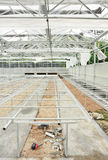 Construct greenhouse. Interior of  construct new greenhouse Stock Photography