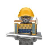 Constructeur de chat tenant la construction de maison dans des ses pattes photographie stock