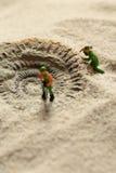 Constructeurs modèles miniatures indiquant le fossile d'ammonite en sable Photographie stock libre de droits
