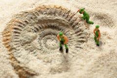 Constructeurs modèles miniatures indiquant le fossile d'ammonite en sable Photo libre de droits