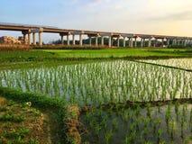 Construction élevée de manière, Chine photo libre de droits