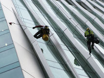 Construction abseilers fix curtain wall of building Royalty Free Stock Photos
