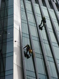 Construction abseilers fix curtain wall of building Stock Photos