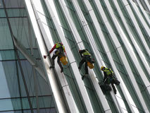 Construction abseilers fix curtain wall of building Royalty Free Stock Photo