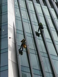 Construction abseilers fix curtain wall of building Stock Photo