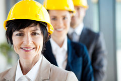 Construction business leader Stock Photo