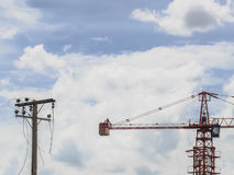 Construction Crane and old electic pole. Royalty Free Stock Photo