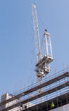 Construction crane scaffolding construction site  against a clea Royalty Free Stock Photo
