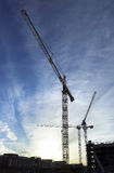 Construction cranes. Wire frame cranes over construction site at sunset Stock Photos