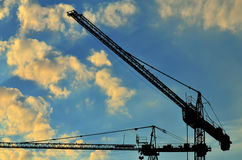Construction cranes against of the sun Royalty Free Stock Image
