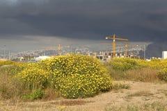 Construction cranes, Lebanon Stock Images