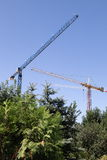 Construction cranes silhouetted against blue sky Stock Photo