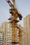 construction cranes site Arkivbild