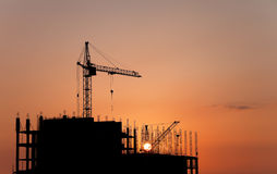 Construction cranes at sunset Stock Image