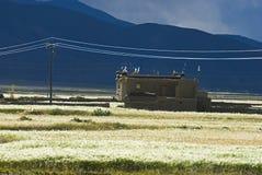 Construction dans l'horizontal tibétain photographie stock