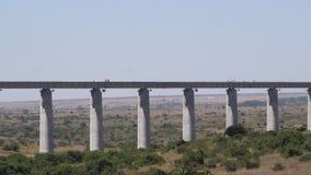 Construction de la ligne de train à grande vitesse en parc du Kenya Nairobi, banque de vidéos