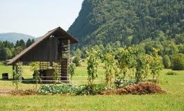 Construction de mémoire et jardin en bois de Veg Image libre de droits