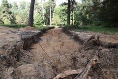 Construction de routes dans la forêt Photos libres de droits