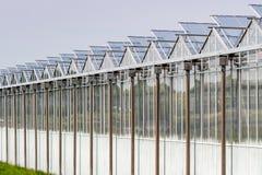 Construction de serre chaude près de Zoetermeer, Pays-Bas photographie stock libre de droits