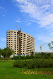 Construction et greening sous le ciel bleu Image stock