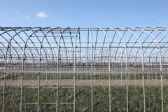 Construction of greenhouse. Agricultural building, construction frame, against a blue sky Stock Photography
