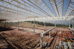 Construction of industrial sheds Stock Images