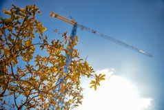 construction-industry-crane-leaves Royalty Free Stock Photography