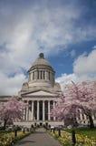 Construction législative avec des fleurs de cerise Image stock