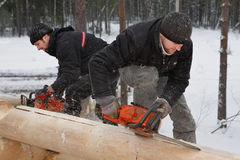 Construction log house, workers make notches on logs using chain Stock Photos