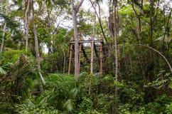Construction métallique rouillée abandonnée parmi la végétation intense d'une forêt tropicale image libre de droits