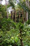 Construction métallique rouillée abandonnée parmi la végétation intense d'une forêt tropicale photos stock