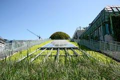 Construction moderne écologique de bibliothèque. Photo stock