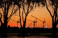 Construction. In morning. Sky color is orange. Tree and crane  silhouette is frame Stock Photography