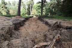 Road construction in the forest. Construction of new road going directly in the forest, Lithuania Royalty Free Stock Photos