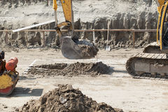 Construction site. Excavator digger on a building site. Earthwork Royalty Free Stock Images