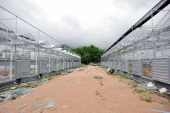Construction site of greenhouse Stock Photo