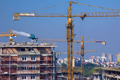 Construction site, lot of cranes Stock Photo