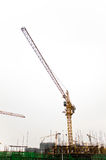 Construction site tower cranes against white sky. Stock Images