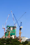Construction site and tower cranes Stock Photography