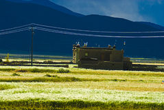 Construction tibétaine photographie stock