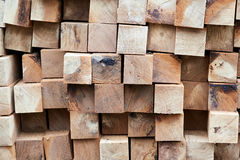 Construction timber logs Stock Photography